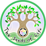 Raw Vegan Chef Training Bali – Seeds of Life – Raw Food Classes Ubud Logo